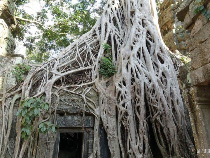 Silvesterparty in Siem Reap